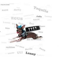 """Personalised, unique """"wish"""" label - LARGE"""