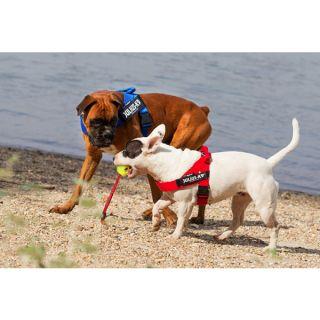 IDC® Lightweight Dog Harness